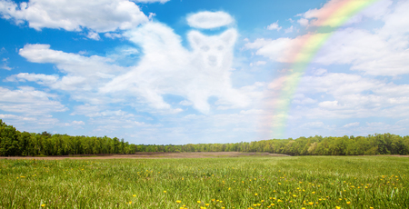 Beautiful open field with a cloud shaped like a dog angel that is passing over the rainbow