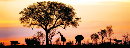 Photo pour Silhouette of African safari scene with animals and vehicle - image libre de droit