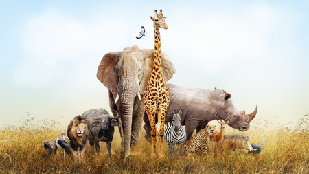 Foto de Large group of African safari animals composited together in a scene of the grasslands of Kenya. - Imagen libre de derechos
