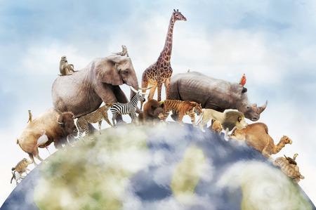 Foto de Conceptual image of wildlife around the planet earth can be used to celebrate World Animal Day - Imagen libre de derechos