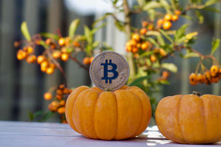 Photo pour Digital currency physical metal bitcoin coin. Halloween cryptocurrency concept. - image libre de droit