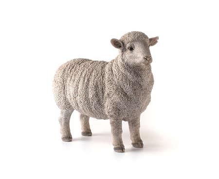 Photo for White sheep figure on white background - Royalty Free Image