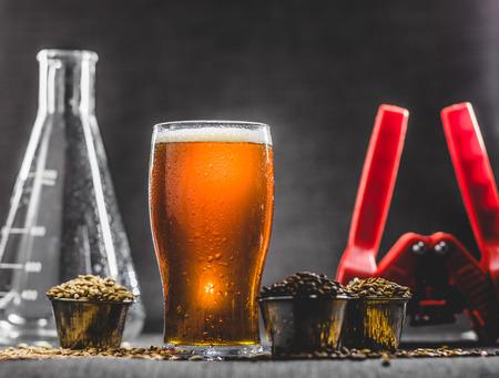 Foto de Homebrew Honey Brown Beer, Different Barley and Brewing Equipment in Studio with Dramatic Light - Imagen libre de derechos