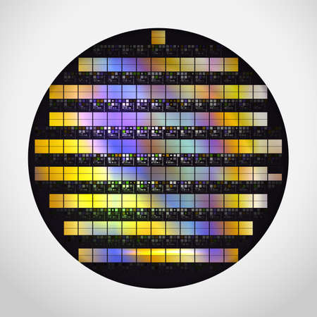Illustrazione per Silicon wafer with ready processors. Realistic vector illustration. - Immagini Royalty Free