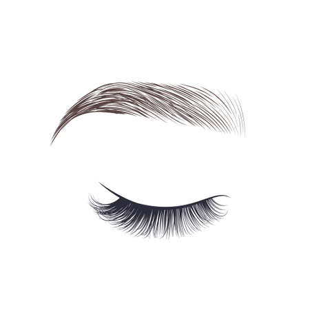 Illustration for Makeup eyebrow. Closed eye with long eyelashes. Vector illustration - Royalty Free Image