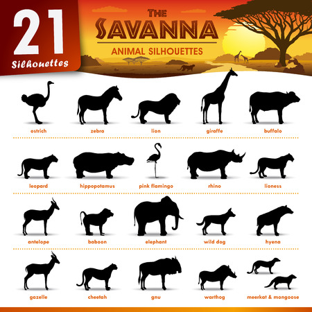 Ilustración de Vector - Set of 21 silhouettes Representing different savanna animals - Imagen libre de derechos