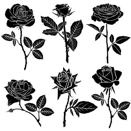 Illustration pour Vector illustrations of set silhouette of  beautiful roses flower - image libre de droit