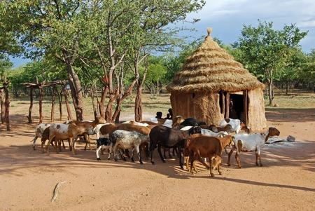 Foto de Himba village with traditional huts near Etosha National Park in Namibia, Africa - Imagen libre de derechos