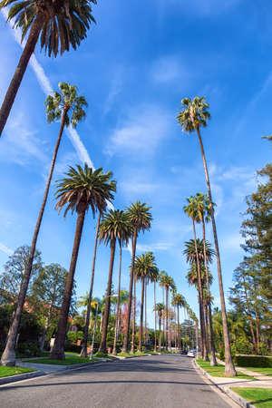 Photo pour Beverly Hills street with palm trees, Los Angeles - image libre de droit