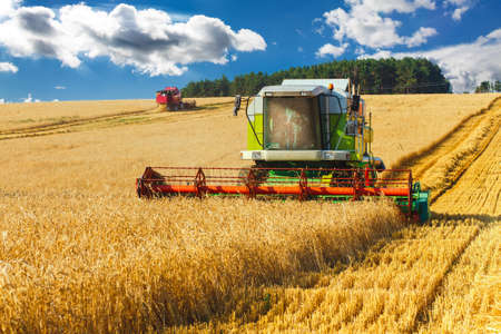 Photo pour combine harvester working on a wheat field - image libre de droit