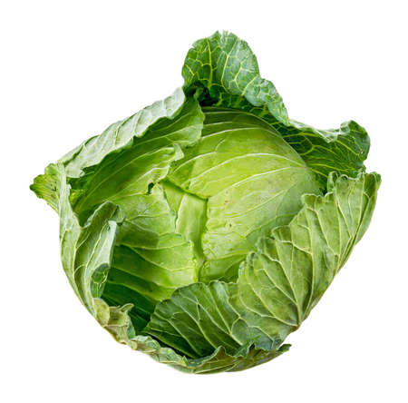 Photo pour Cabbage isolated on white background - image libre de droit