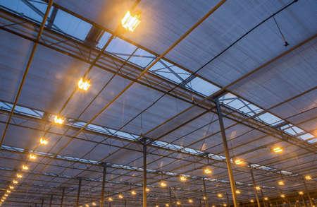 Foto de the roof of the greenhouse with a burning lighting equipment, evening hours - Imagen libre de derechos