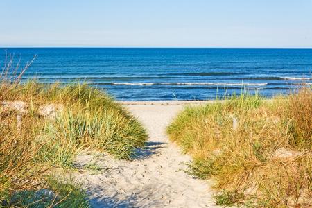 Foto de beach access, pathway to the baltic sea with marram grass aside - Imagen libre de derechos