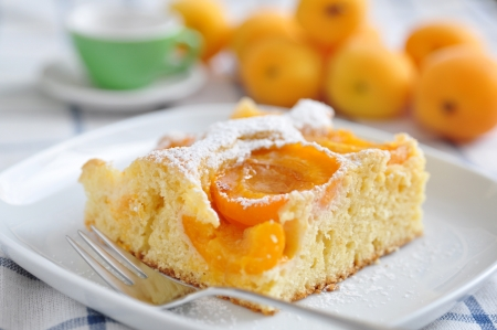 Photo for Home made german apricot cake - Royalty Free Image