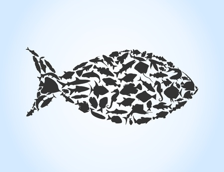 Fish collected from small fishes. A vector illustration