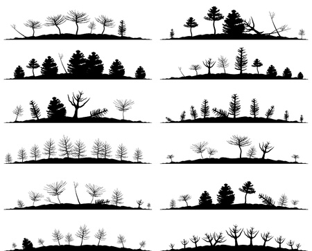 Set of landscapes of woods