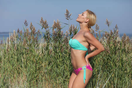 Photo for young girl in bikini posing against the background of grass and sea - Royalty Free Image