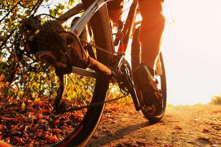 Mountain Bike cyclist in action. Low angle close up view.