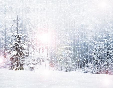 Photo pour Winter. Snowfall. - image libre de droit