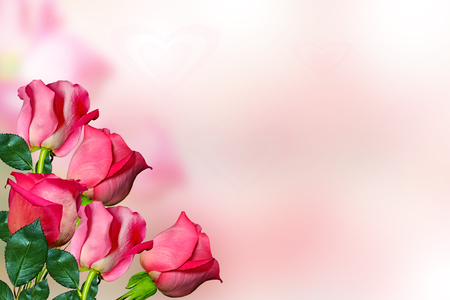 Photo pour The buds of flowers roses. Holiday card - image libre de droit