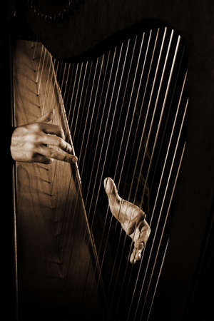Photo for Harp strings closeup hands. Harpist with Classical Music Instrument - Royalty Free Image