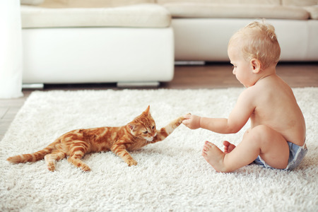 Photo for Toddler playing with red cat on a white carpet at home - Royalty Free Image