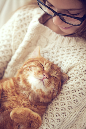 Photo for Cute ginger cat sleeps warming in knit sweater on his owner's hands - Royalty Free Image