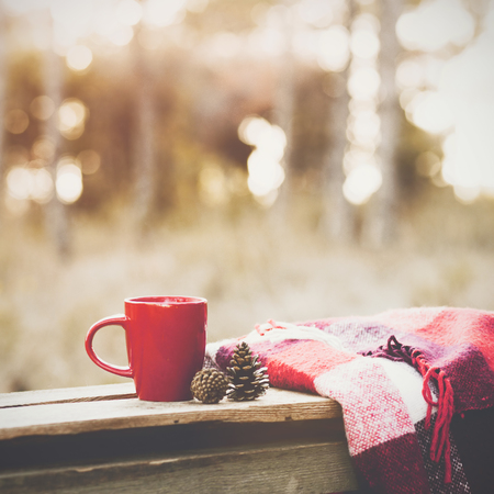 Foto de Cup of tea and warm plaid blanket on wooden rustic bench in the autumn forest. Fall weekend. Photo toned, selective focus. - Imagen libre de derechos