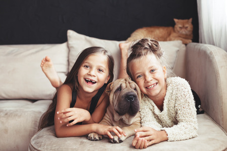 Photo pour Home portrait of two cute children hugging with ginger cat and puppy of Chinese Shar Pei dog on the sofa against black wall - image libre de droit