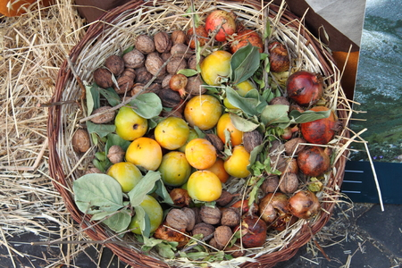 Basket with various fruits: Pomergranades, Nuts and Persimmon kaki