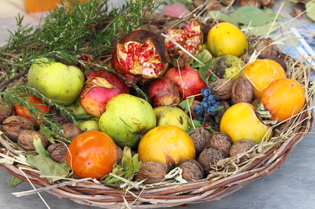 Basket with various fruits: Pomergranades, Nuts, Persimmon kaki, Apples and Grapes