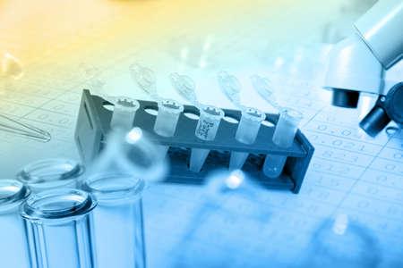 Foto de Micro tubes with biological samples in laboratory for DNA analysis - Imagen libre de derechos