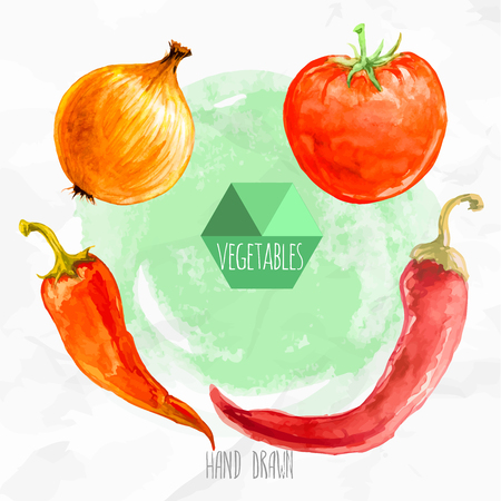 Watercolor hand painted vegetables set. Eco food illustration. Watercolor green background. Chili peppers, onionand tomato. Hot and spicy.