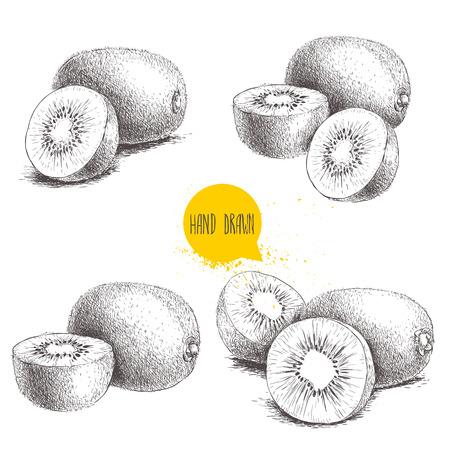 Ilustración de Hand drawn kiwi fruit vector illustration set. Sketch style vector design isolated on white background. Tropic fruit. - Imagen libre de derechos