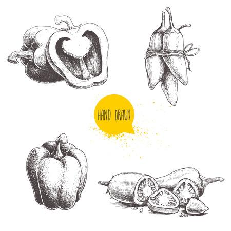 Ilustración de Hand drawn sketch collection of different types of pepper. - Imagen libre de derechos