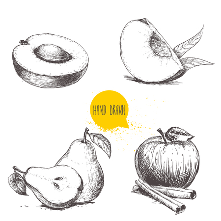 Ilustración de Hand drawn sketch style fruits set. Apricot, peach quarter with leafs, whole pear and half, apple with cinnamon sticks. Vector illustration collection on white  background. - Imagen libre de derechos