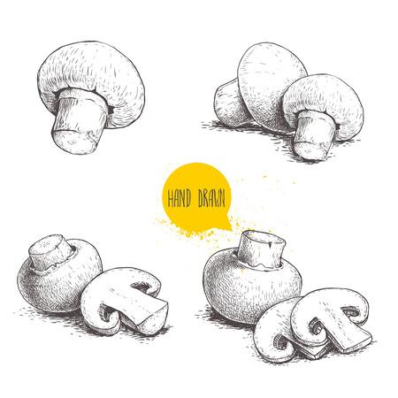 Illustration for Sketch of mushroom. - Royalty Free Image