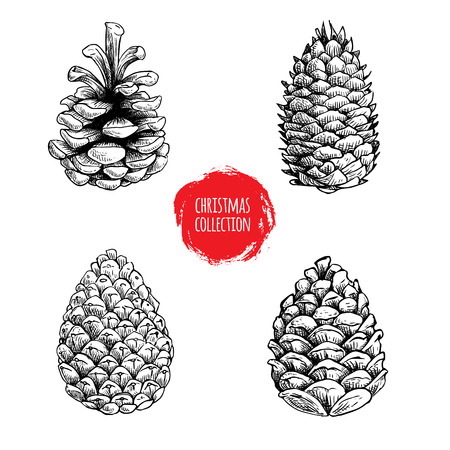 Illustration pour Hand drawn sketch pine cones set. Christmas collection isolated on white background. Vector illustrations. Great for seasonal holiday decor and greeting cards. - image libre de droit