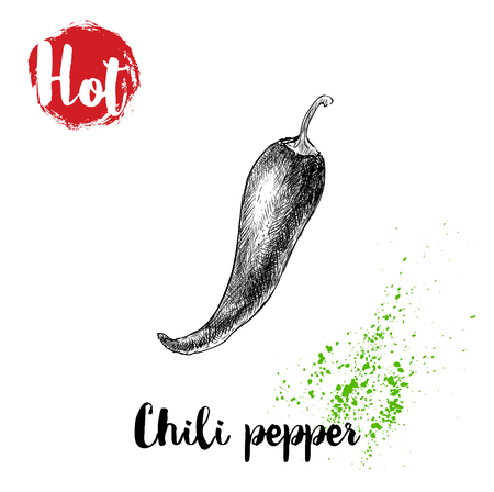 Ilustración de Hand drawn sketch style hot chili pepper poster. Red label with hot sign. Vector illustration isolated on white background. - Imagen libre de derechos