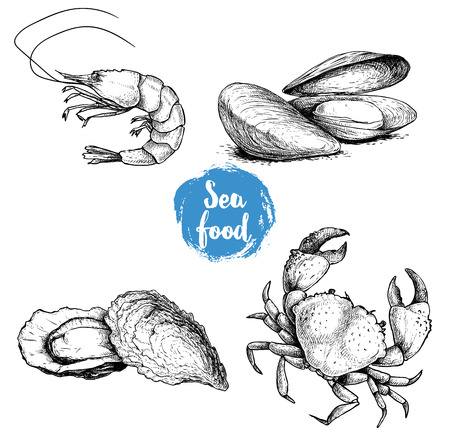 Illustration pour Seafood sketches set. Fresh shrimp, mussels and oysters, crab. Sea market products collection. Vector illustration isolated on white background. - image libre de droit