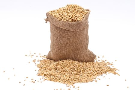Bag with wheat of a grain