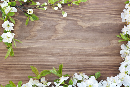 Photo for Frame of spring flowers on a wooden background. - Royalty Free Image