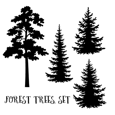 Illustrazione per Fir and Pine Trees set, Black Silhouettes Isolated on White Background. Vector - Immagini Royalty Free