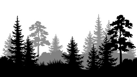 Illustrazione per Seamless Horizontal Summer Forest with Pine, Fir Tree, Grass and Bush Black and Gray Silhouettes on White Background. Vector - Immagini Royalty Free