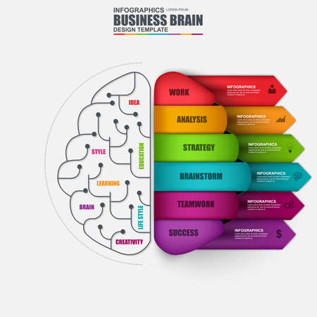 Illustration pour Infographic brain vector design template. Can be used for workflow layout, data visualization, business brainstorming concept with 6 options, parts, steps, banner, diagram, chart, web design. - image libre de droit
