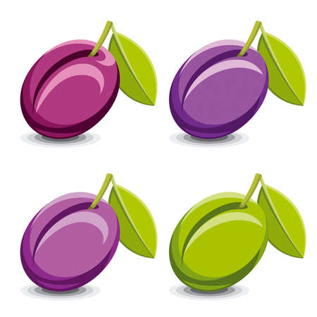 Set of vector plums