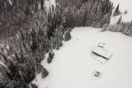 Photo pour Aerial view above the frozen forest - image libre de droit