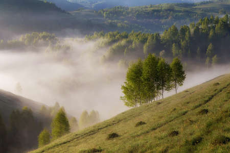Photo for Foggy summer sunrise in Transylvania - Royalty Free Image