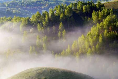 Photo for Foggy summer sunrise in Transylvania - Royalty Free Image