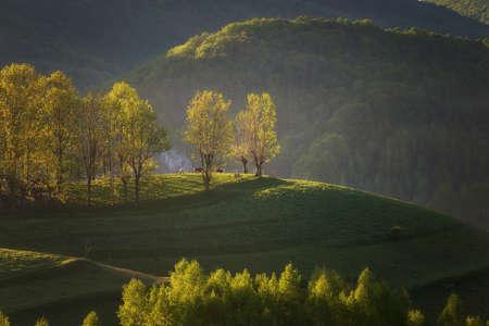 Photo for Beautiful summer sunrise in Transylvania - Royalty Free Image